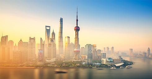 菏柴动力系统(山东)有限公司上海分公司